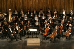 The Orchestra of the Novaya Opera Theatre